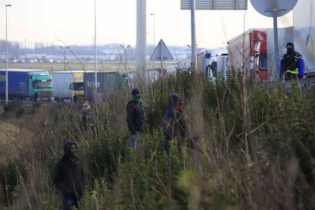 Neuf migrants trouvés dans un camion se rendant à Zeebrugge, onze autres dans une remorque à Saint-Trond