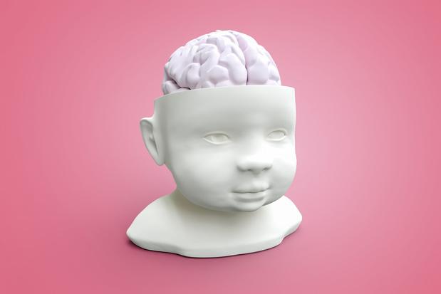 Le stress précoce du père impacte le développement cérébral de sa progéniture