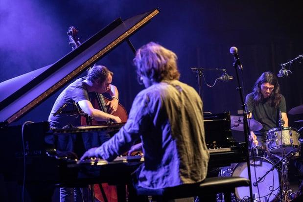 Voor De Beren Gieren en Steiger is jazz geen genre maar een sleutel naar de vrijheid