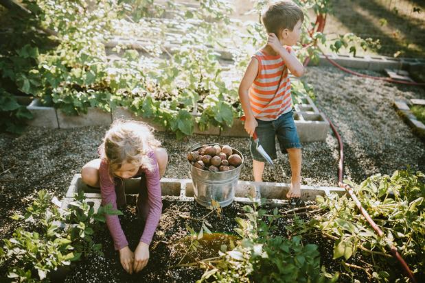 'Gebruik de hefboom die schoolmaaltijden kunnen zijn en maak werk van een lokale voedselstrategie'