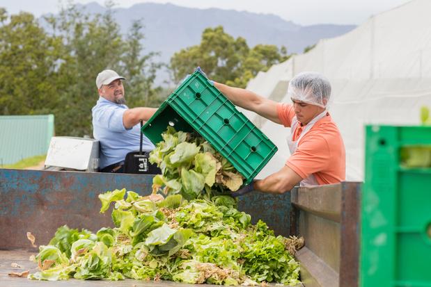 Le gaspillage alimentaire, facteur oublié du réchauffement climatique
