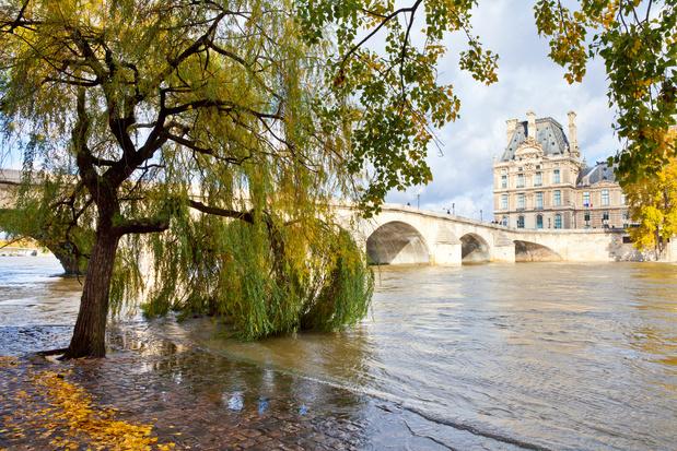Louvre pakt uit met luxueuze cultuurcruises