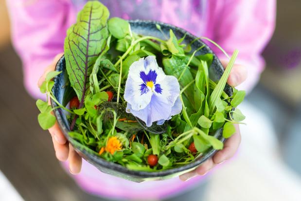 Zomerse salade van kruiden en bloemen met waterkersvinaigrette