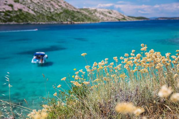 Over zee van Dubrovnik tot Zadar: zeil langs de mooiste baaien van Kroatië