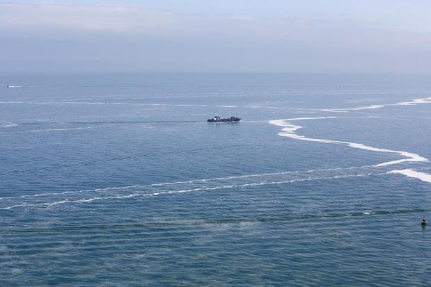 'Zolang de Noordzeenatuur slecht beschermd is, staat blauwe economie op losse schroeven'
