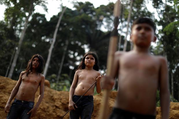 'Respect voor rechten van inheemse volkeren is sleutel om Amazonewoud te redden'