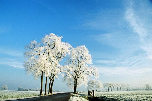 Winsum verkozen tot mooiste dorp van Nederland