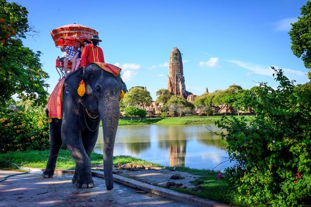 Thaise olifanten lijden onder corona
