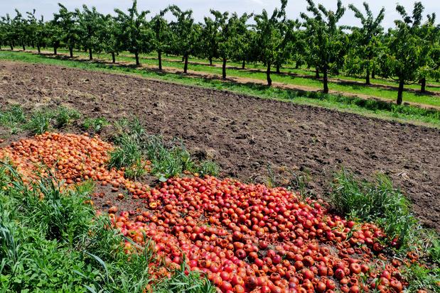 'We hebben een overheid nodig die initiatieven tegen voedselverspilling doet groeien'