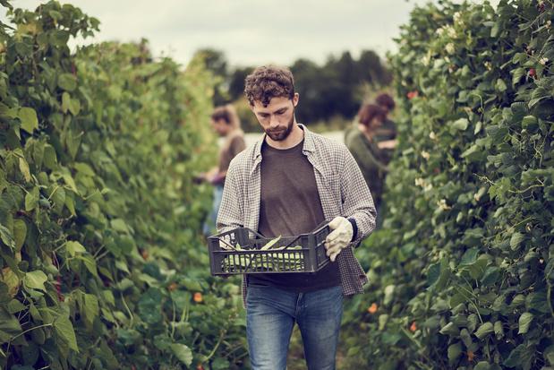 'Waterarm Vlaanderen moet inzetten op landbouw die kiest voor meer plantaardige productie'