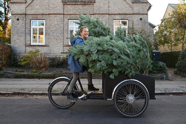 Nu al drie keer meer kerstbomen verkocht dan andere jaren