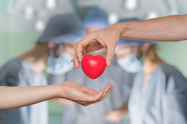 2019, année record du don d'organe en Belgique