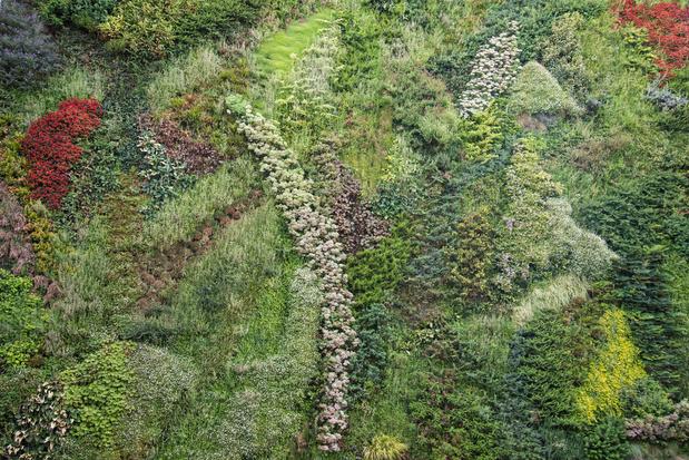 Vertoeven in een verticale tuin: vijf van 's werelds mooiste groene gevels