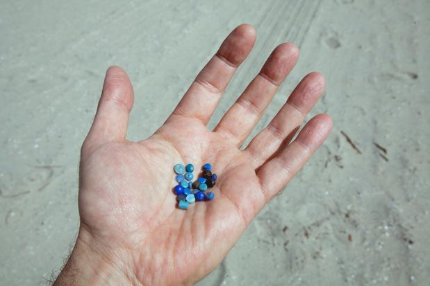Mogelijk tientallen miljarden plastickeutels op oevers van Schelde