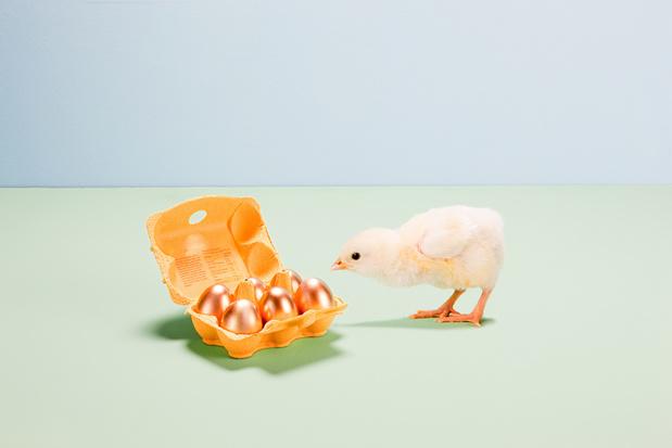 Van de grootste paashaas tot exclusieve eitjes: dit jaar brengen de klokken de crème de la crème