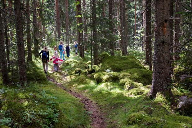 Ardennen krijgen een CO2-neutraal vakantiedorp