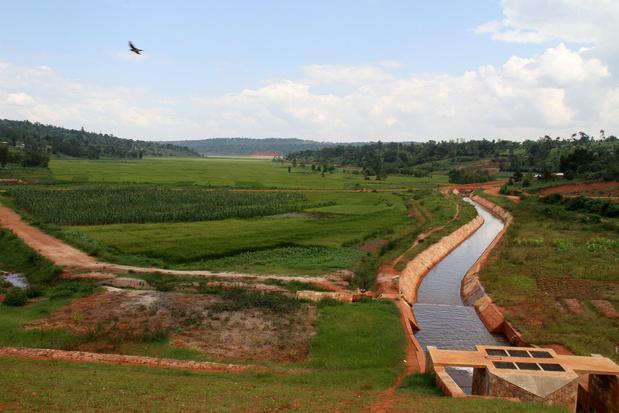 Massagraf met meer dan 6.000 lichamen gevonden in Burundi