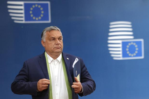 'Wie dacht dat Orban in de rest van Europa enkel aversie zou opwekken, komt bedrogen uit'