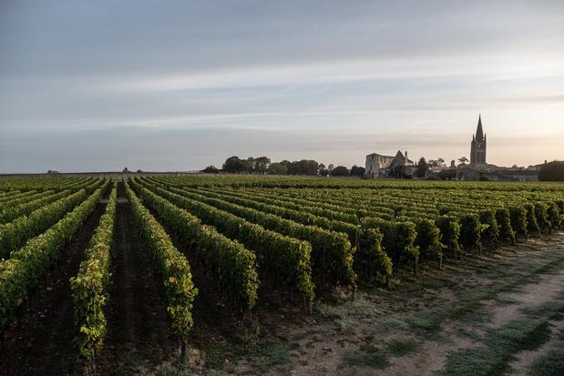 Alles over Tourrit 20: een uitje langs de wijngaarden