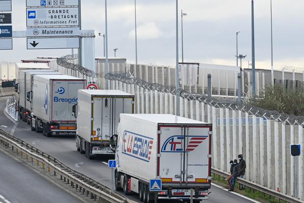 Werkgeversorganisatie Voka: 'Dringend oplossing nodig voor vrachtverkeer van en naar Verenigd Koninkrijk'