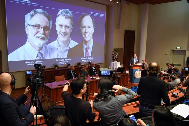 Nobel de médecine: le travail de trois médecins sur l'oxygénation des cellules récompensé