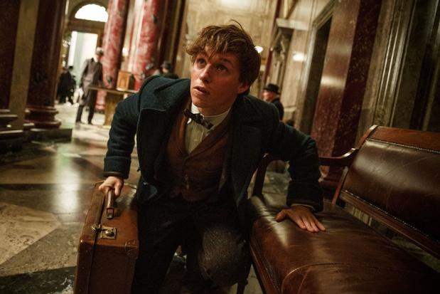 Pas de série Harry Potter pour la plateforme de streaming de Warner