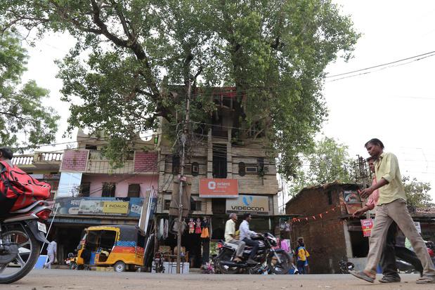 En Inde, une maison construite autour d'un arbre sacré