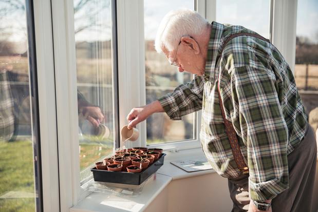 Préparer son potager à la maison : les bons gestes