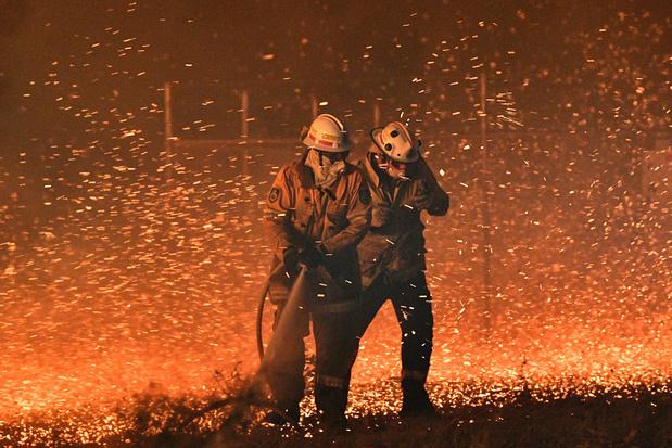 Sydney menacée de coupures de courant à cause des incendies