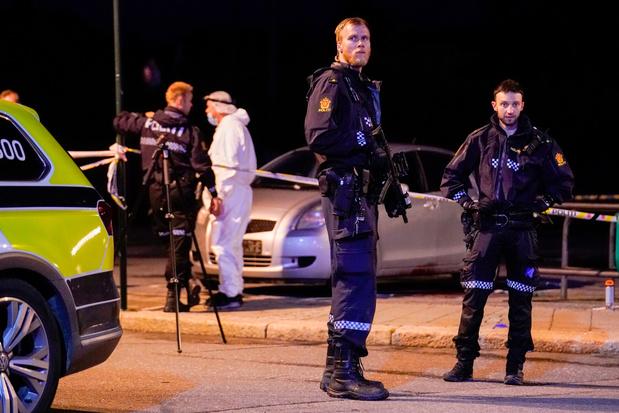 Plusieurs personnes tuées par un homme armé d'un arc à flèches en Norvège