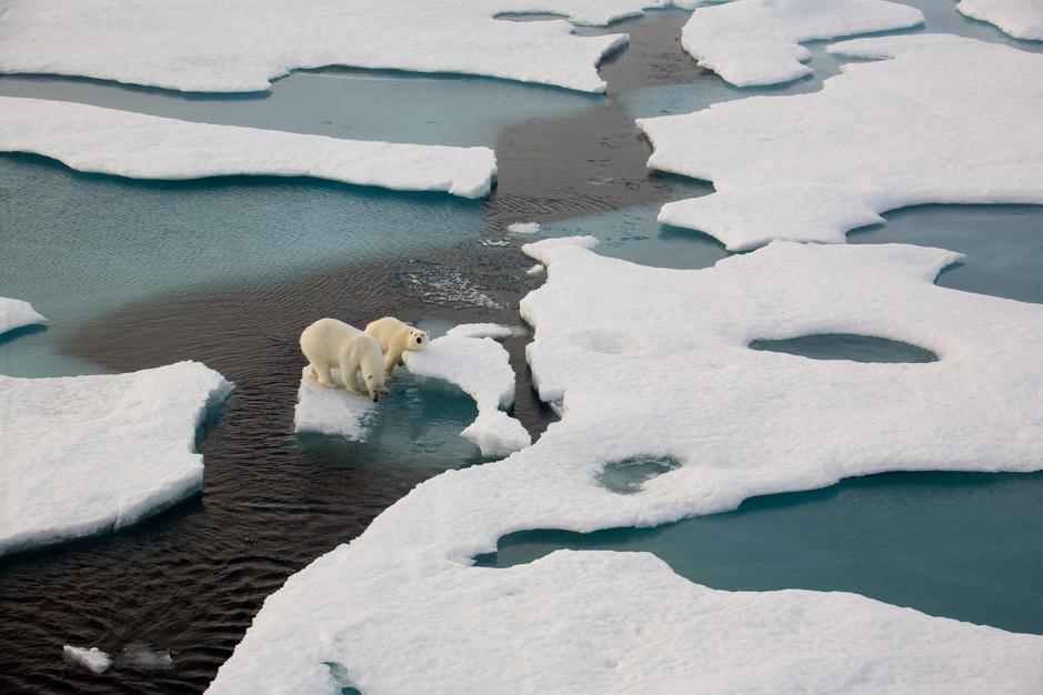 Wereldoceanendag: de belangrijkste oceaanbedreigingen in beelden en cijfers