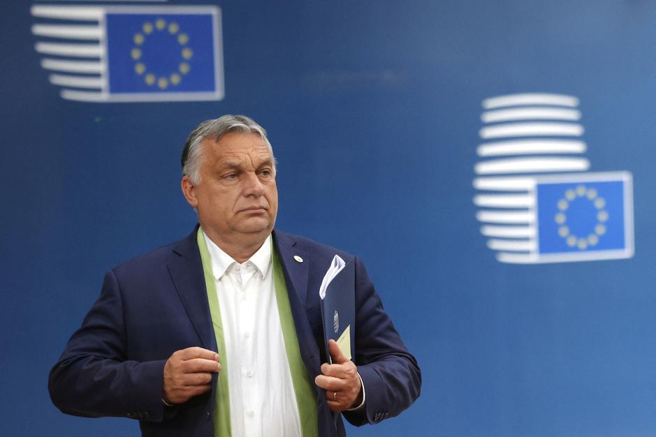 Veel protest tegen Orbán, maar wat kan de EU echt doen?