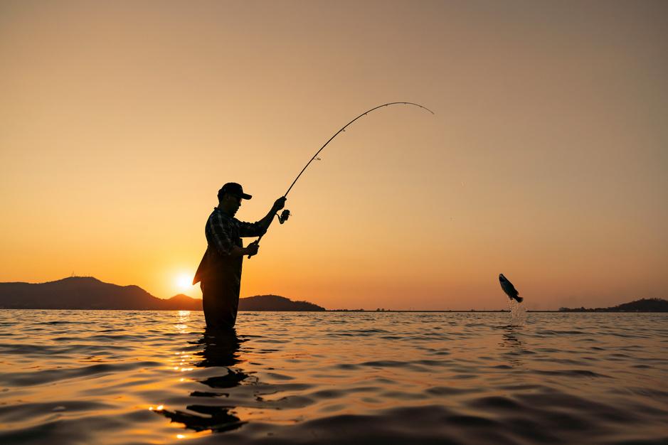 Phished à la pêche en Europe