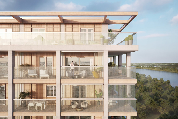 Bekende architect Shigeru Ban ontwerpt eerste houten wolkenkrabber van België