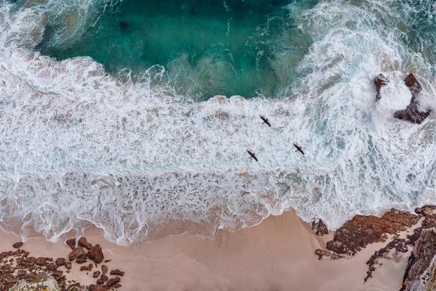 Kaapstad wil zijn stranden beter beschermen