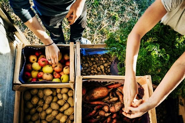 Belgen kopen meer groenten en fruit in buurtwinkel