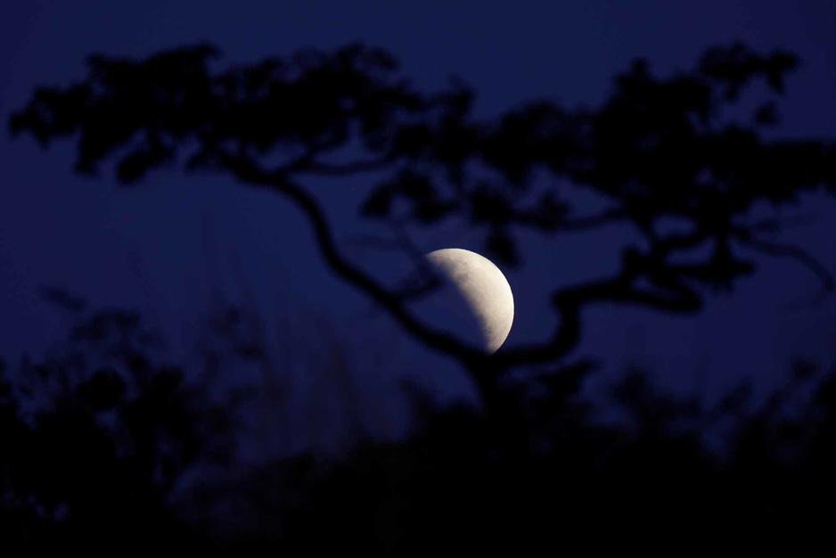 En images: l'éclipse partielle de Lune à travers le monde