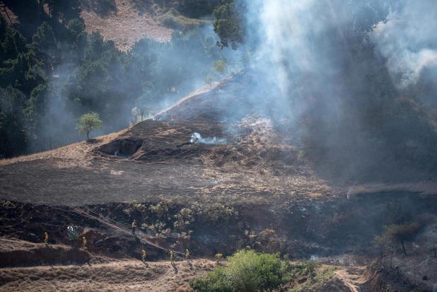 L'incendie de Grande Canarie circonscrit