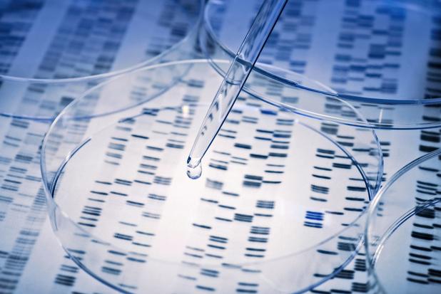 La BSMO lance un projet pilote de traitement personnalisé contre le cancer