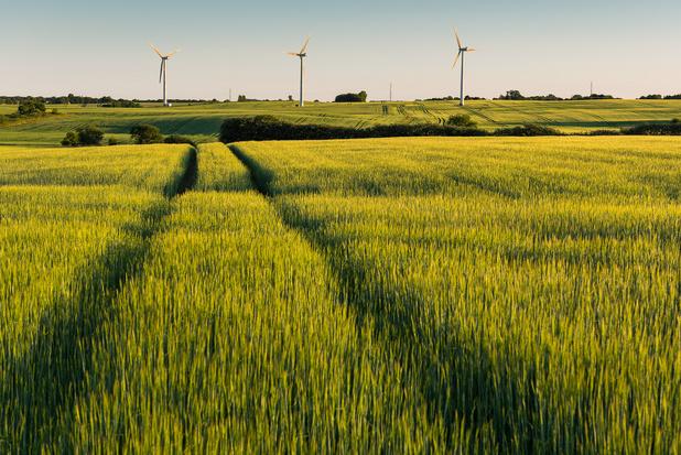 Rapport du GIEC: Il faut agir maintenant, estime Greenpeace