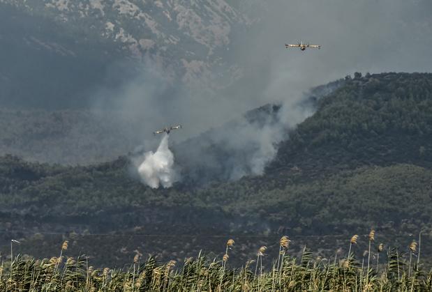 La Grèce frappée par plusieurs feux de forêt