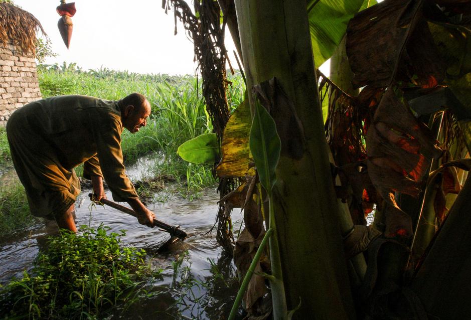 De Nijl is geen zekerheid meer: Egypte bereidt boeren voor op waterschaarste