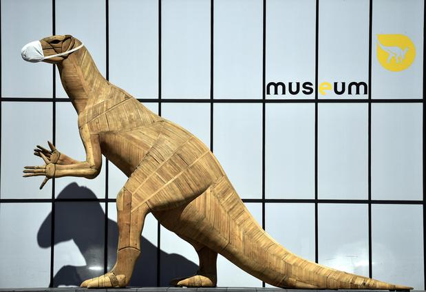 Museum voor Natuurwetenschappen opent 'Levende Galerij' met 850 dieren