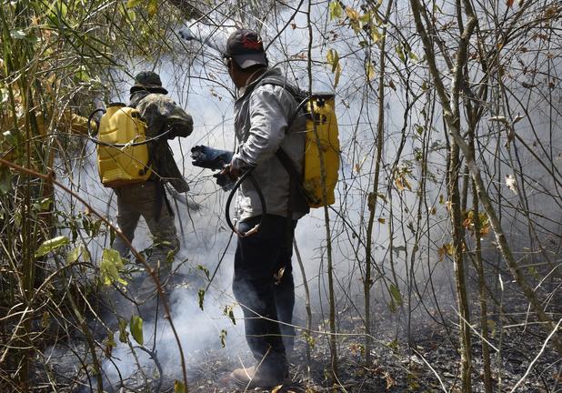 """Le Brésil snobe l'aide du G7 et dit que les feux en Amazonie sont """"sous contrôle"""""""