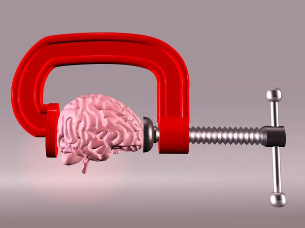 Le gène FOXO3 préserve la capacité de notre cerveau à se régénérer