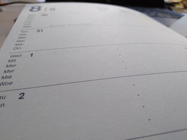 Animaux, psychologues, horeca...: voici tout ce qui change le premier septembre