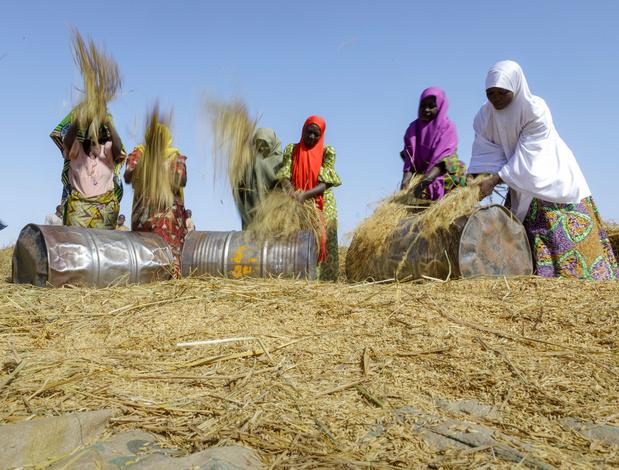 'Klimaatneutraal worden via herbebossing ondermijnt strijd tegen armoede en ongelijkheid' (Oxfam)