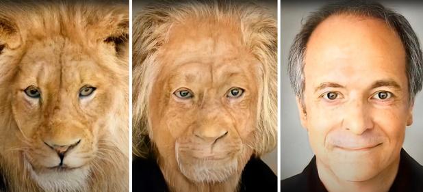 Voici comment a été réalisé le 'face morphing video' lors des Data News Awards