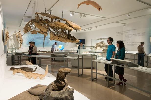 Online tool vertelt welk museum bij je past