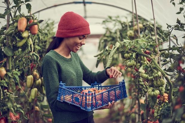 Over de toekomst van ons eten: 'Er valt geld te verdienen met landbouw, maar we moeten de conversatie veranderen'